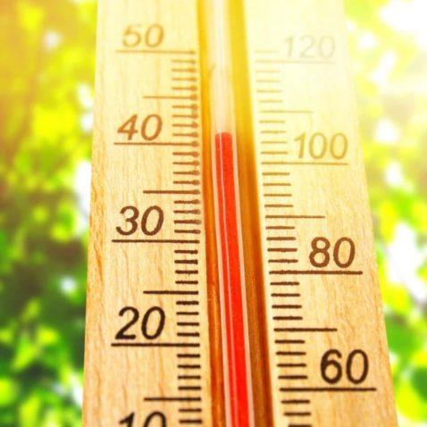 Grow Room Temperature
