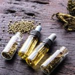 Which Oil is the Best for Cannabis?