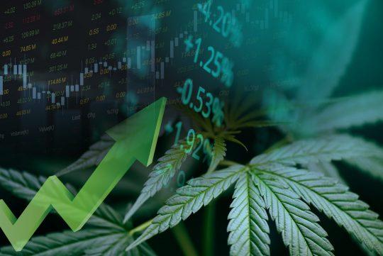Economic Argument for Cannabis Legalization