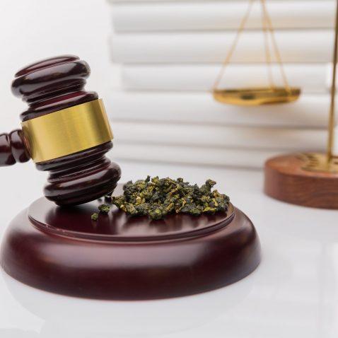 Cannabis Legalization; A Cause for Good?