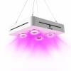 CF Grow 600W LED Cob Grow Light-1