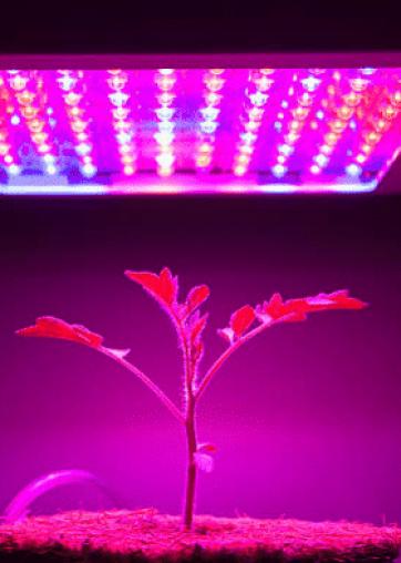 Image of close up LED light